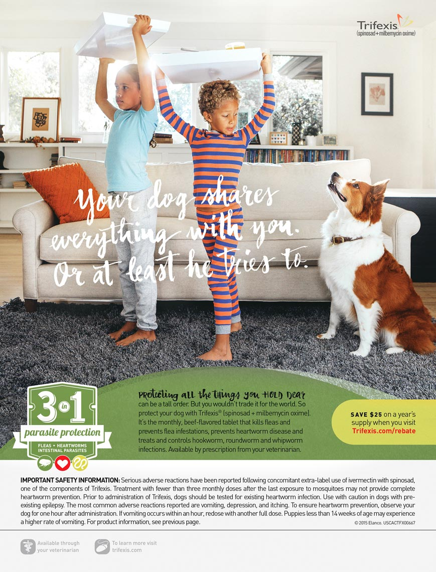 58109 TrifexisHealthyPetSummerKidsFullPageAd_4_0_CB.indd