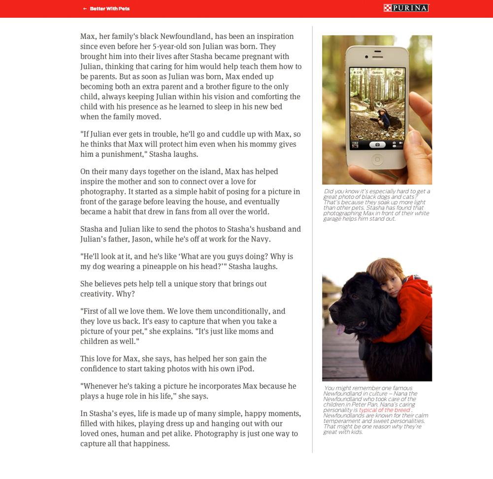 website-article-purina